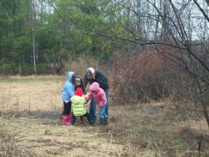 Greenwood Elementary students planting tree