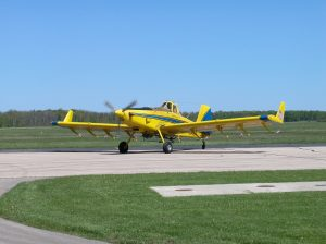 Aerial spraying for gypsy moth is done by a loud, low flying airplane beginning early in the morning.