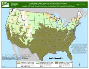 EAB emergence map as of July 10, 2017. Tan colors in the north are approaching peak emergence, light green is peak emergence, and olive is past peak emergence.