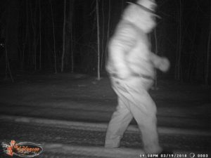 Smokey Bear Trail Cam Photo