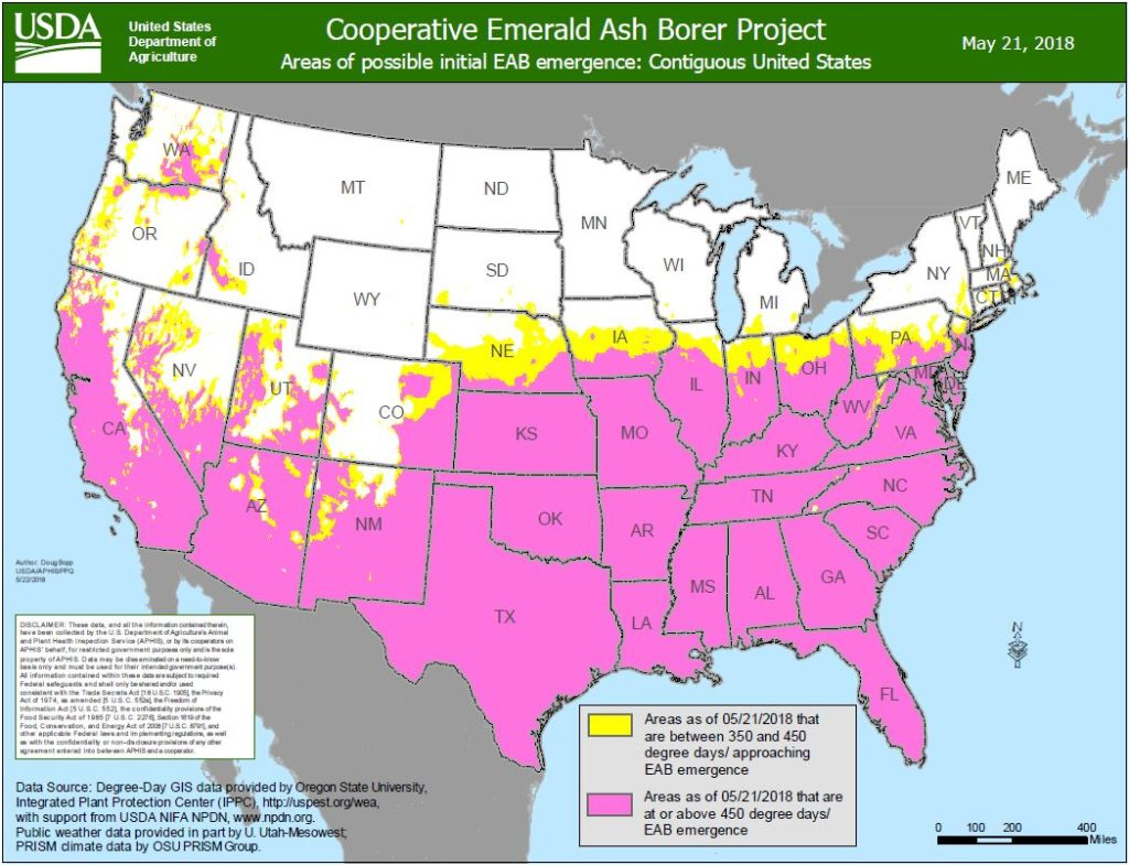Areas of possible initial EAB emergence.