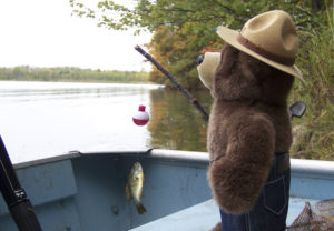 Smokey Bear Fishing