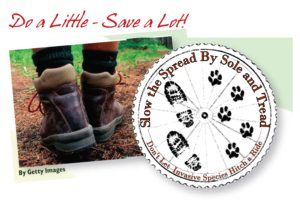 Slow the spread by sole and tread - logo and image of boots that could carry invasive seed