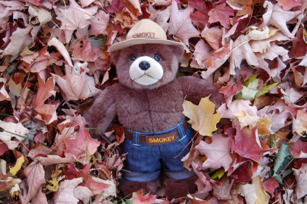 Smokey in a pile of leaves asking you to compost instead of burning your leaves.