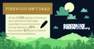 Firewood isn't dead - infested firewood can carry insects and diseases to new places