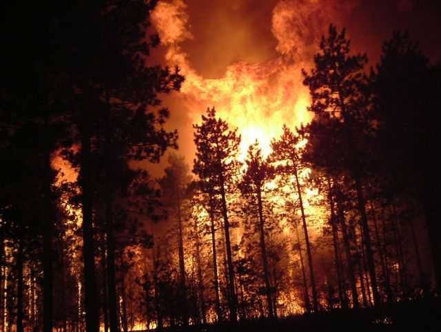Crown Fire during the Cottonville Fire